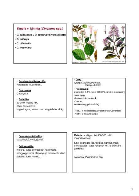 catharanthus pikkelysömör kezelése